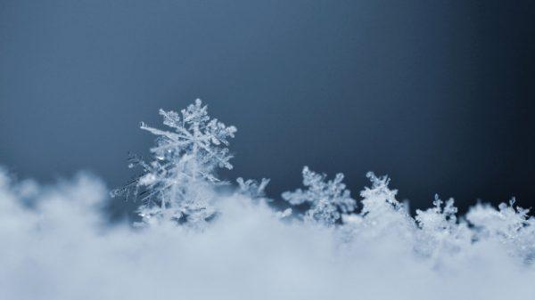 Winter Working Toolbox Talk [BEWARE OF FROSTBITE]