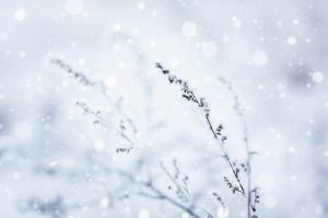 Cold Weather Safety Talk